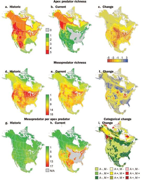 Mesopredator Release Range Map