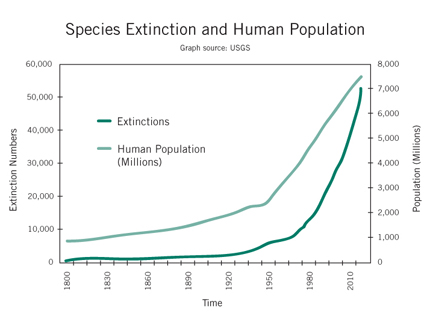 What is Overpopulation?