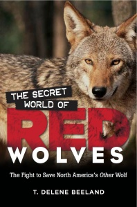 The Secret World of Red Wolves