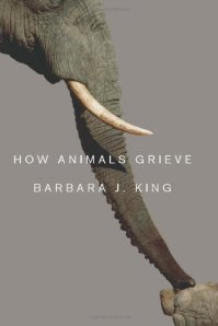 Have you ever witnessed a pet or captive animal grieve? How did you know what it was feeling?
