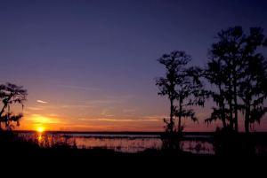 Newnans Lake-07